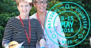Wesley Mission Brisbane volunteers.